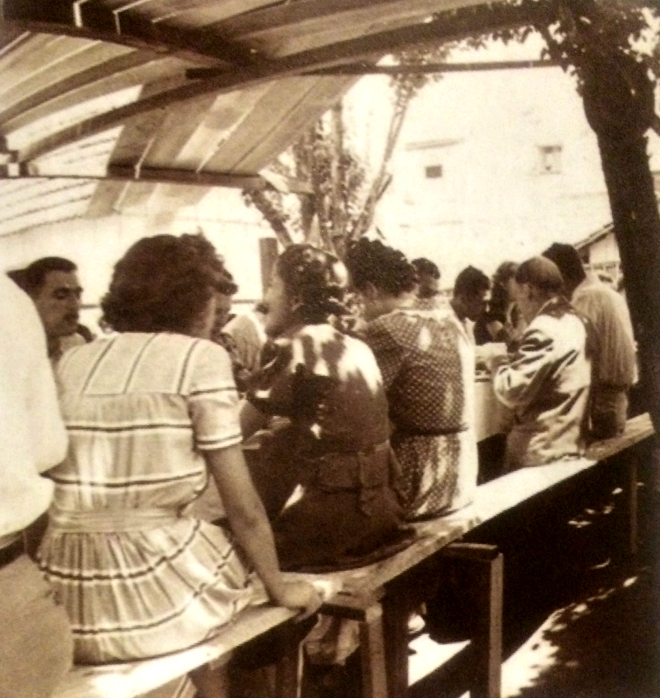 Almoço sob pereiras na casa de Emilio e Etelvina em Irati